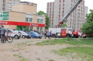 В Смоленске спасли людей из горящей девятиэтажки