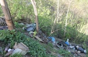 Активисты нашли очередную свалку на улице Дзержинского в Смоленске
