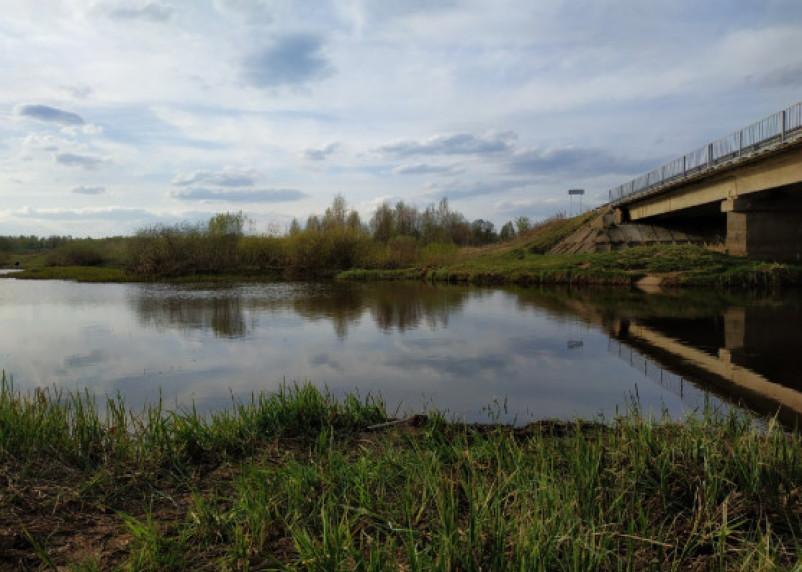 В Демидовском районе стали пропадать мосты