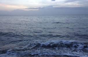 Смолянам предлагают поработать с подземной морской водой