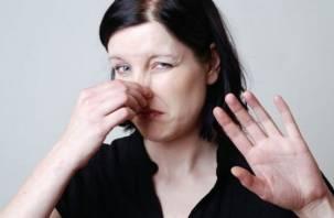 Неприятные запахи максимально улучшают память