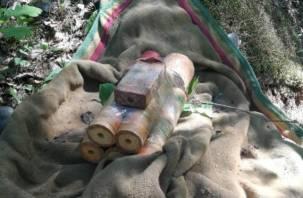 На Смоленщине найден «схрон» с боеприпасами