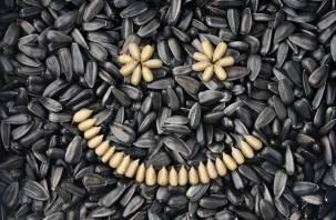 Названа лучшая белковая пища для здоровых перекусов