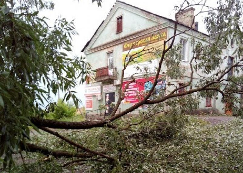 «А ведь это знак!» Фото последствий урагана в Вязьме
