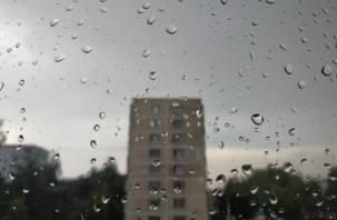 В пятницу в Смоленске погодных сюрпризов не ожидается