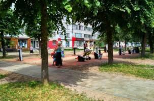 Есть и «новинки». В центре Смоленска появились уличные тренажеры