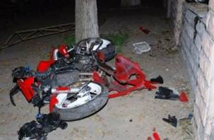 Мотоциклист подбил дерево в Озёрном. Два человека оказались в больнице