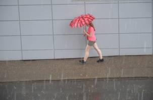Тепло, но дождливо. О погоде в воскресенье в Смоленской области