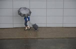 Дожди не прекращаются. Смолянам советуют завтра взять с собой зонт