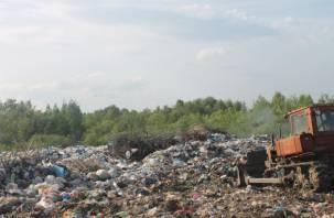 Руднянский район зарастает огромными свалками