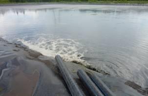 За загрязнение реки и массовую гибель рыбы в Смоленской области в суде ответит техник свиноводческой фермы