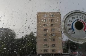 В ближайшие 3 часа на Смоленщину обрушится ливень