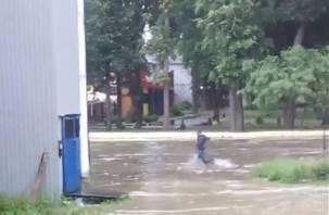 Плывущие и бегущие по волнам в Рославле попали на видео