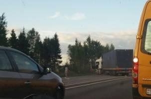 Подробности ДТП с влетевшей под МАН легковушкой на М-1 в Смоленском районе