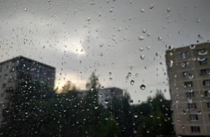 Понедельник встретит смолян дождём