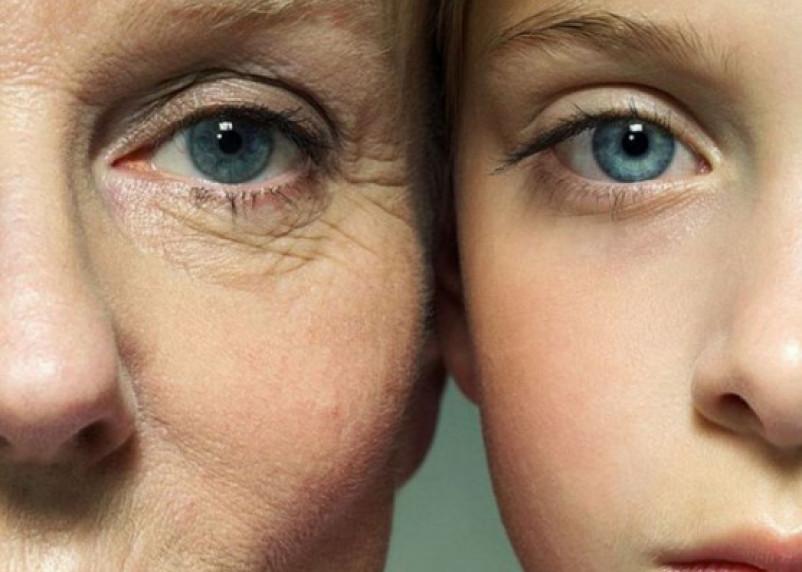 Раскрыт новый механизм старения