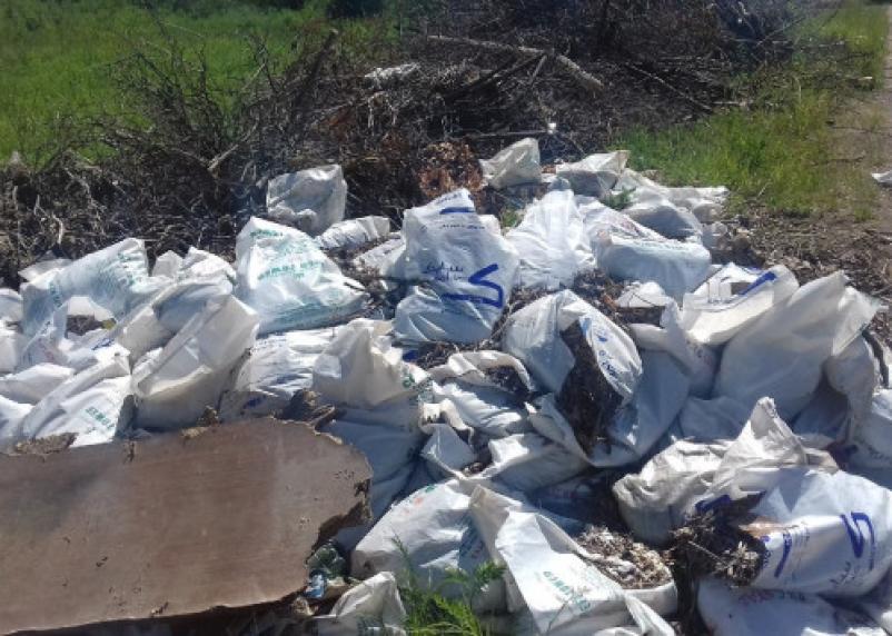 «Вопиющее безобразие». Ярцевчане заметили, куда скидывают мусор