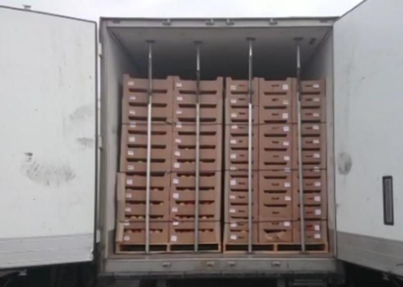 В Россию пытались ввезти фрукты из Беларуси под видом герметика