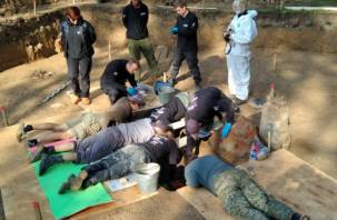 Французские и российские археологи обнаружили сенсационную находку в Смоленске