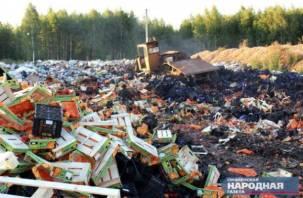 Прекратить уничтожение санкционных продуктов предложили в правительстве