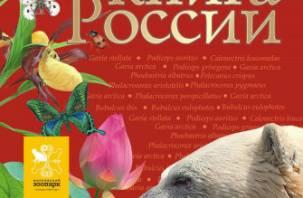 Смоленские прокуроры блокируют сайты с продажей животных