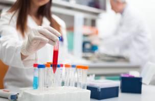 Уникальный природный антибиотик нашли российские ученые