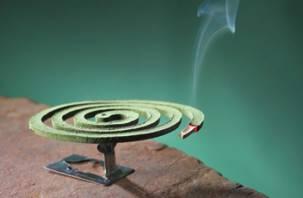 Дым спиралей от комаров вреден для здоровья человека