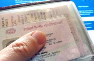 В правительстве РФ рассказали, когда водители смогут ездить без пластиковых прав