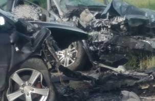 Уточненная информация по смертельному ДТП с тремя пострадавшими в Смоленской области
