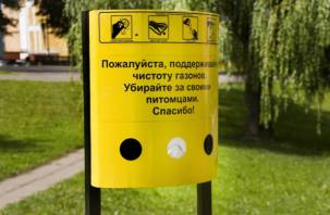В Смоленске появились первые дог-боксы