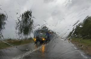 На Россию идёт волна дождей с градом. Смоленщину накроет уже сегодня