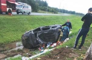 В Рославльском районе иномарка вылетела в кювет. Два человека погибли