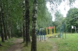 В Смоленске в Вишенках добились приостановки застройки зеленой зоны и детской площадки