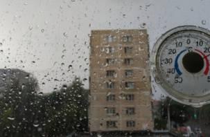 Ветер до 20 м/с. На завтра в Смоленской области объявлено штормовое предупреждение