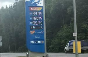 Большая разница: цены на калужской АЗС впечатлили смолянина