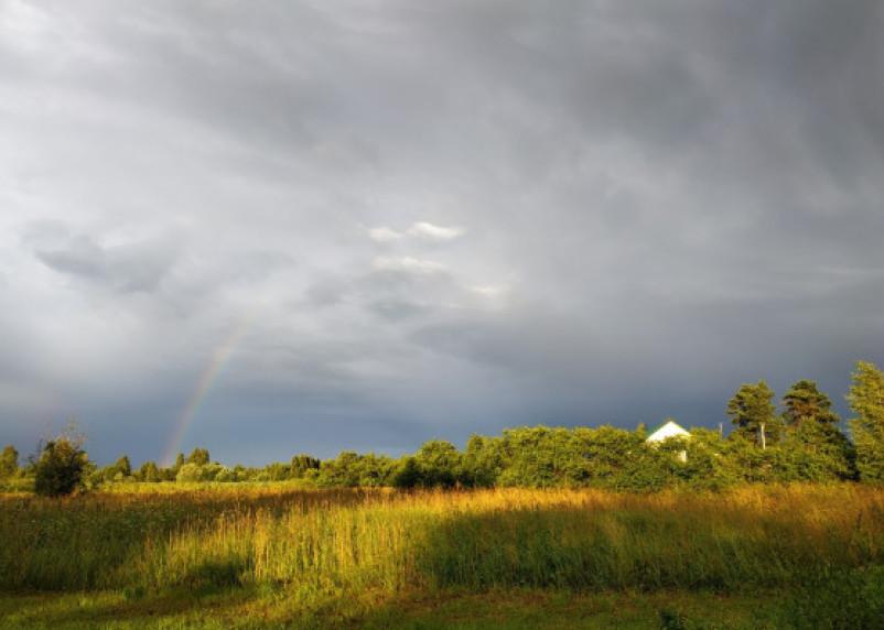 Тёплый день, возможны грозы. Синоптики рассказали о погоде 30 июня в Смоленской области