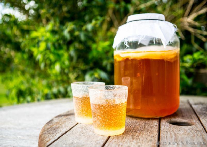 Снижает давление и помогает худеть. Врачи рекомендуют пить чайный гриб