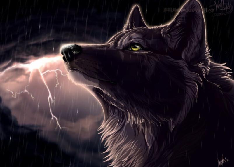 Волки-одиночки. Астролог назвал три знака зодиака