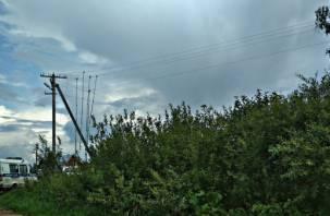 Обрыв электропровода привел к трагедии в Новодугинском районе. Smolnarod побывал на месте происшествия