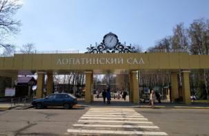 Лопатинский сад возглавит новый директор