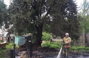 В Сафоновском районе кролики сгорели по вине детей