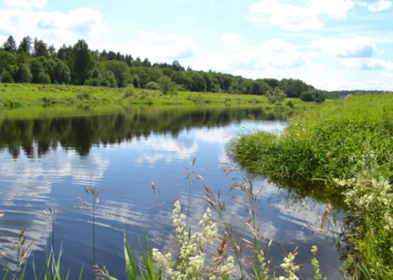Русло реки Вязьма надо бы расчистить, а на ремонт гидротехнических сооружений в двух районах области дадут субсидии