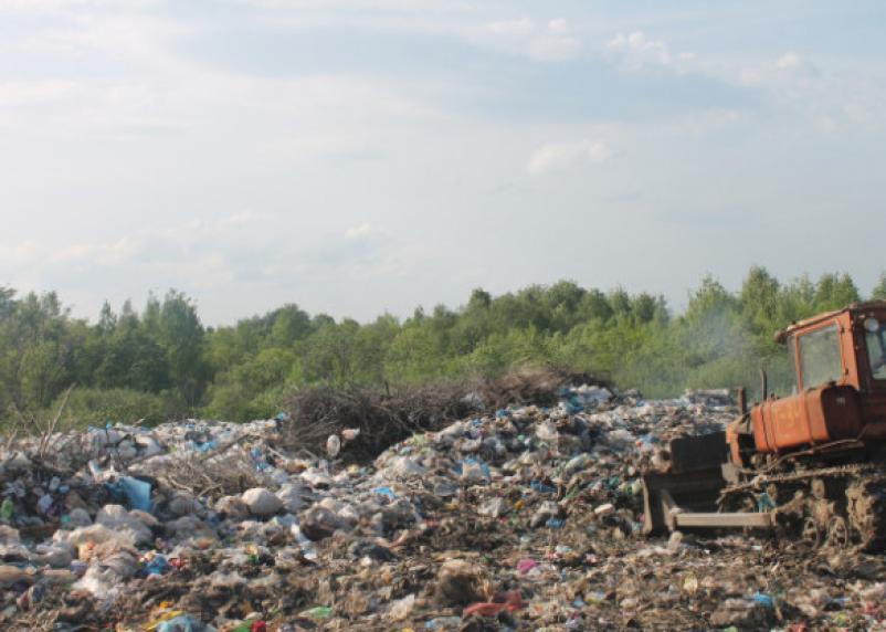 Эксперты ВШЭ предлагают московский мусор отвозить в Смоленскую область
