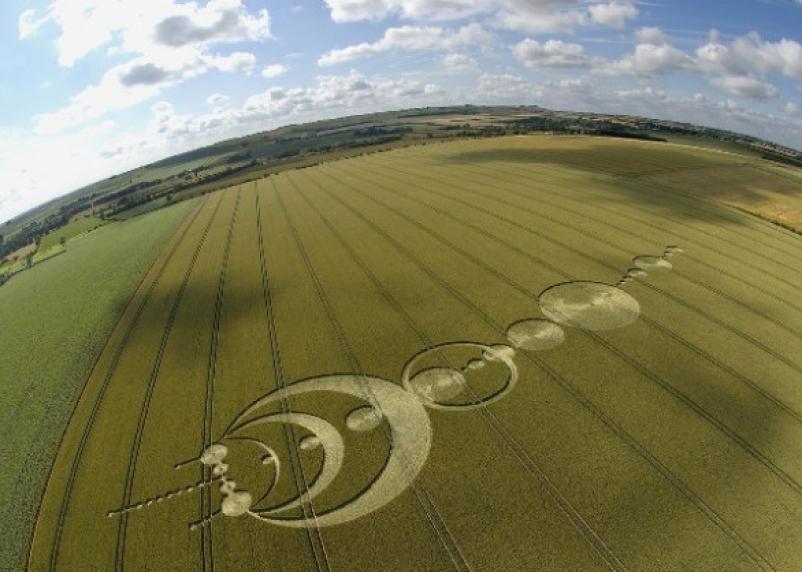 Учёные пытаются объяснить странные рисунки на полях