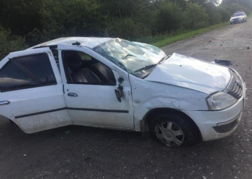 Автоледи едва ли не угробила троих маленьких детей. Серьезная авария произошла в Гагаринском районе