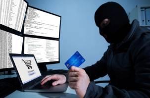 В России в восемь раз выросло количество преступлений с использованием электронных средств платежа