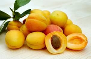 Назван самый полезный фрукт для организма