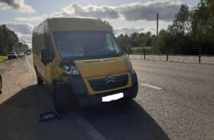 Полиция ищет очевидцев смертельного ДТП в Вяземском районе