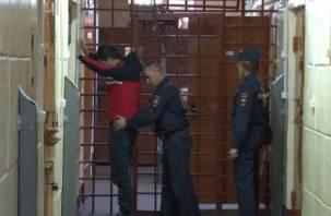 За 200 доз героина смолянину грозит 20 лет тюрьмы. Видео с задержанием попало в Сеть