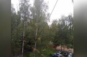 В Смоленске оборванный провод угрожает жизни детей?